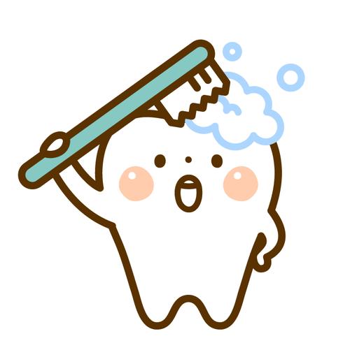 歯 イラスト.png