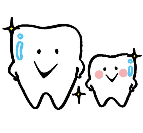 歯の親子.jpg